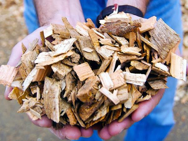 caldaie-biomassa-industriali-Reggio-Emilia
